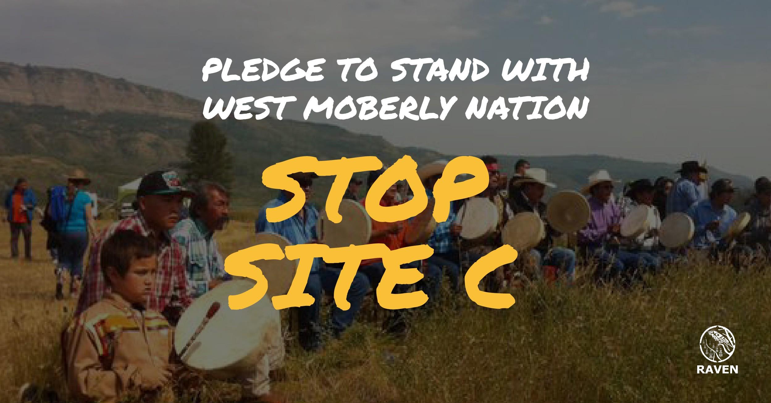 Site C - pledge-02